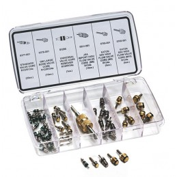 Kit de noyaux de valves